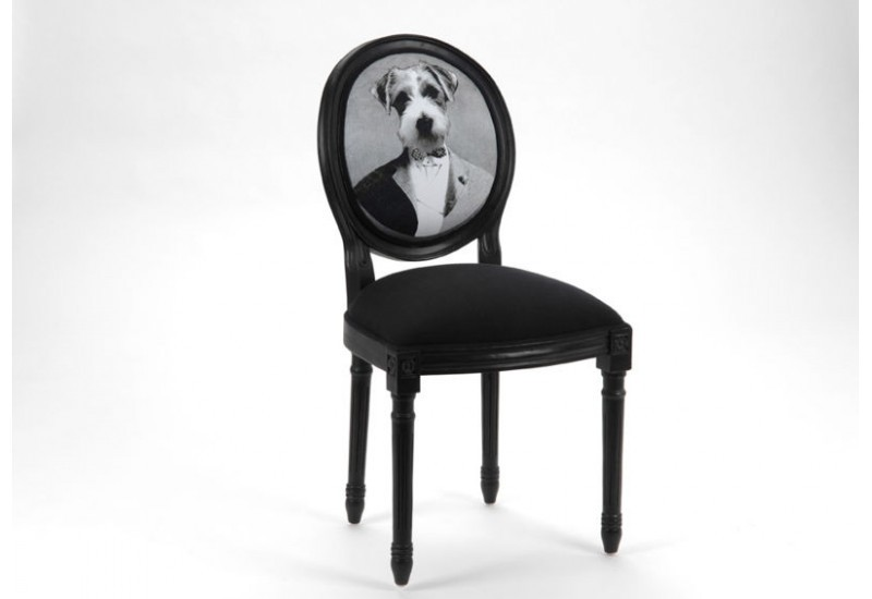 chaise style louis xvi noir avec un dossier rond chien en costume a. Black Bedroom Furniture Sets. Home Design Ideas