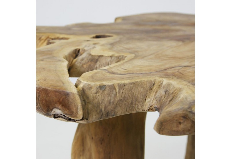 Table basse souche top table basse souche with table for Table plateau tronc d arbre