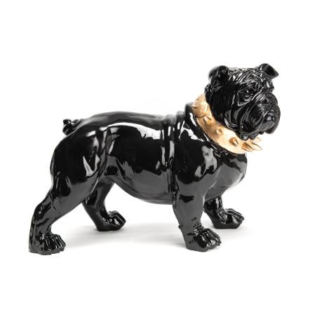 Bulldog debout noir collier doré Amadeus