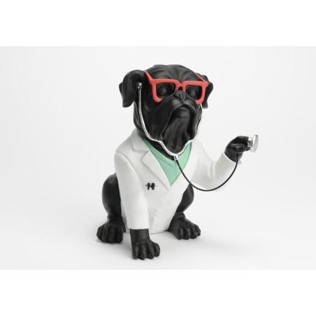 Chien Docteur