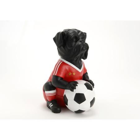 Chien Footballeur